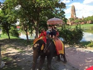 象に乗ってアユタヤ遺跡巡り